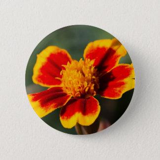 flower in the garden pinback button