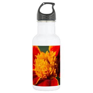 flower in the garden stainless steel water bottle