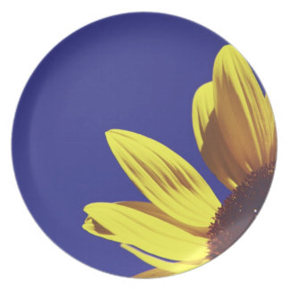 Flower in the Sun Dinner Plate