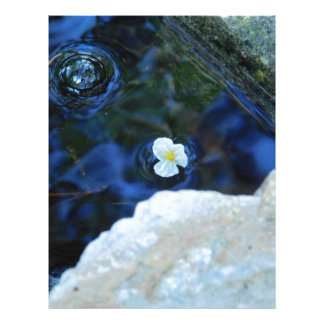Flower in water letterhead