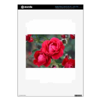 flower iPad 3 skins