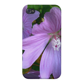 Flower iPhone 4 Cases