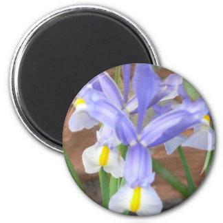 flower,iris 2 inch round magnet