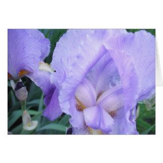 Flower - Iris Card