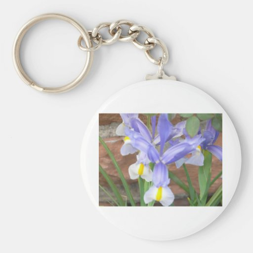 flower,iris key chains