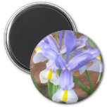 flower,iris refrigerator magnets