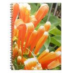 Flower.jpg anaranjado libreta