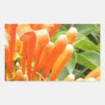 Flower.jpg anaranjado pegatina rectangular
