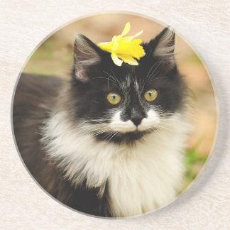 Flower Kitten Coasters