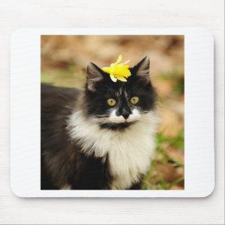 Flower Kitten Mouse Pad