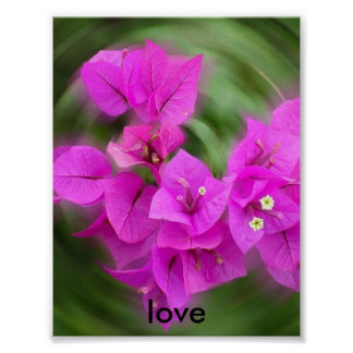 Flower, love posters