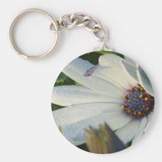 Flower Macro From Balboa Park Basic Round Button Keychain