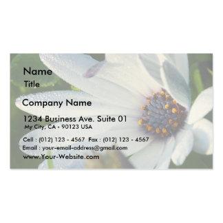 Flower Macro From Balboa Park Business Card