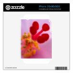 Flower macro_hibiscus iPhone 2G decals