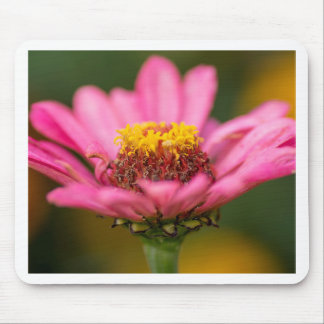 Flower macro mouse pad