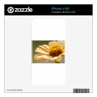 Flower macro decal for the iPhone 4
