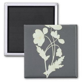 Flower 2 Inch Square Magnet