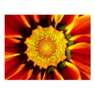 Flower Mandala / Postcard