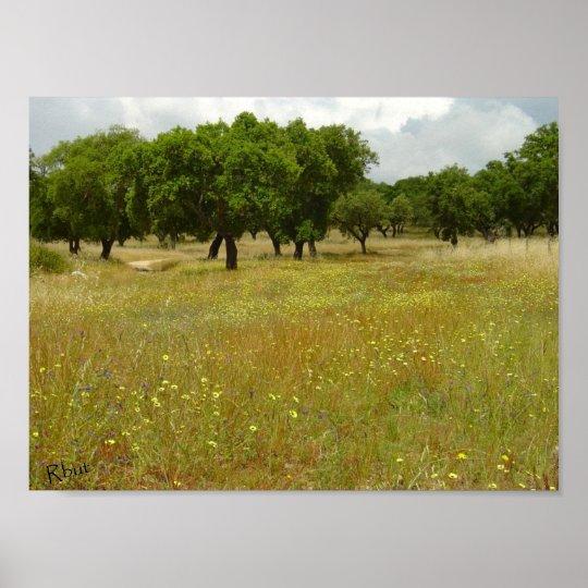Flower meadow with oak trees - print