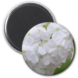 Flower mf  133 refrigerator magnet