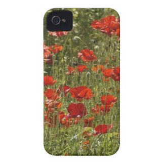 Flower mf 15 iPhone 4 Case-Mate case