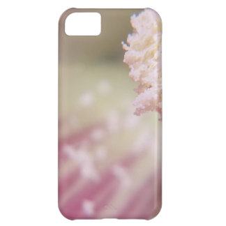 Flower mf 199 cover for iPhone 5C