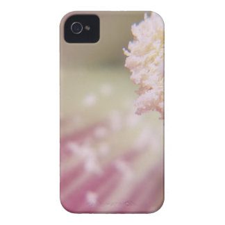 Flower mf 199 iPhone 4 cases