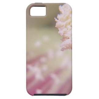 Flower mf 199 iPhone 5/5S case