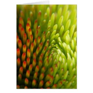 Flower mf 206 greeting card