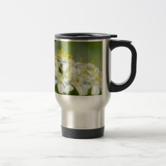 Flower mf 223 coffee mugs