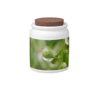 Flower mf 321 candy jar