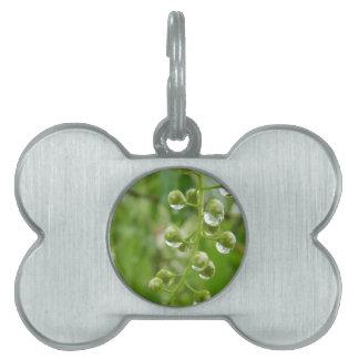 Flower mf 321 pet name tag