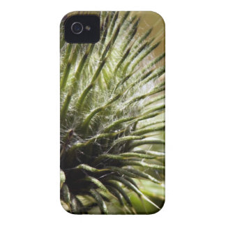Flower mf 484 Case-Mate iPhone 4 case