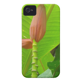 Flower mf 489 iPhone 4 Case-Mate cases