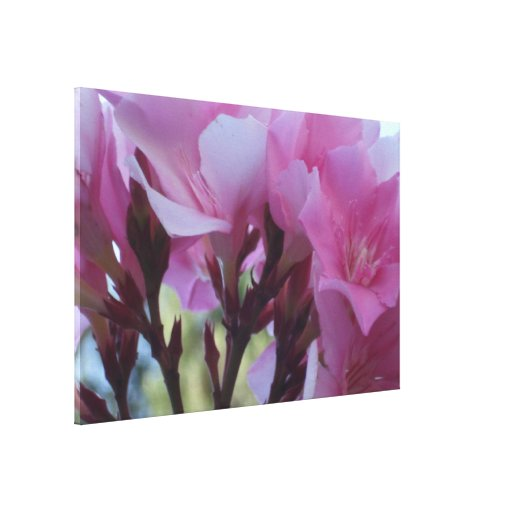 Flower mf 589 gallery wrapped canvas