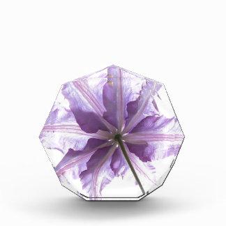 Flower Nature Award