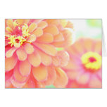 Flower Oasis ~ Greeting Card