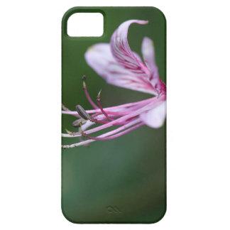 Flower of a burning bush iPhone SE/5/5s case