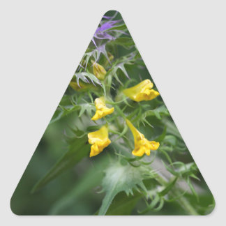 Flower of a crested cow wheat triangle sticker