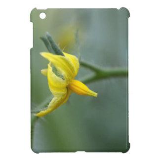 Flower of a Cucumber  plant iPad Mini Case