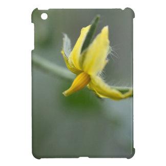 Flower of a Cucumber  plant iPad Mini Cases