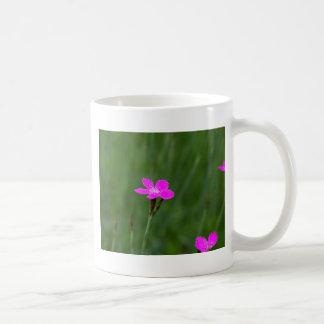 Flower of a maiden pink coffee mug