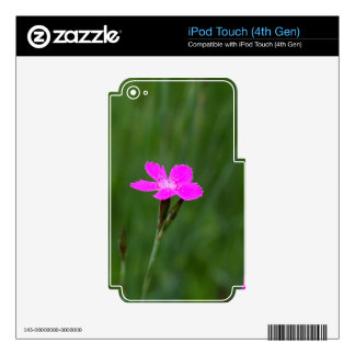 Flower of a maiden pink iPod touch 4G decal