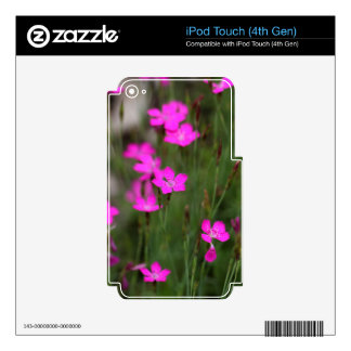 Flower of a maiden pink iPod touch 4G skin