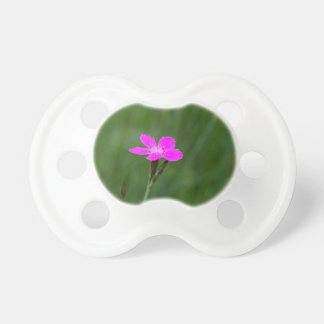 Flower of a maiden pink pacifier