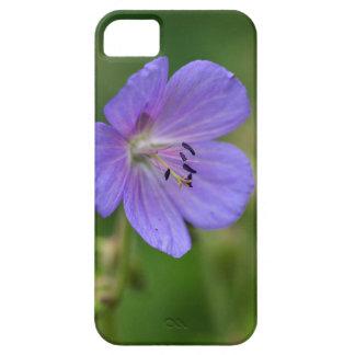 Flower of a meadow geranium iPhone SE/5/5s case