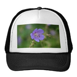Flower of a meadow geranium trucker hat