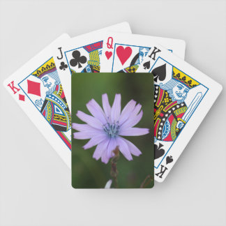 Flower of a mountain lettuce bicycle playing cards