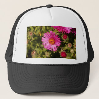 Flower of a New England aster Trucker Hat