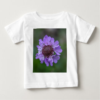 Flower of a Scabiosa lucida Baby T-Shirt